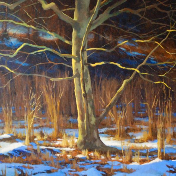 gregory-blue-winter-sentinel-1x1